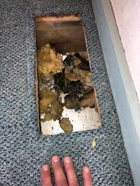 poop in air duct